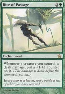 Magic: the Gathering - Rite of Passage - Fifth Dawn