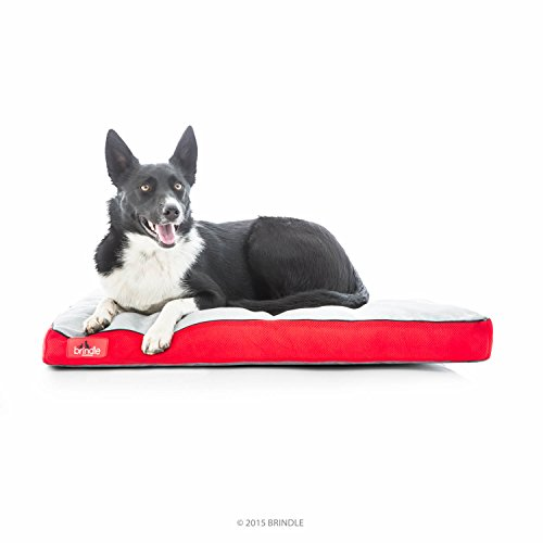brindle-soft-memory-foam-dog-bed-with-removable-washable-cover-34in-x-22in-red