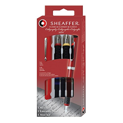 Sheaffer Calligraphy Mini Kit, 1 Viewpoint Pen with 3 Interchangeable Nib Grades (Best Sheaffer Pen Sets)
