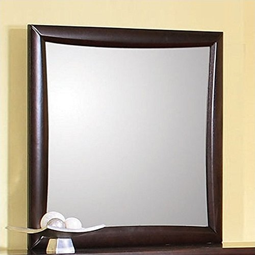 Coaster 200414 Casual Contemporary Mirror, Cappuccino