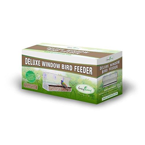 the 8 best window bird feeder