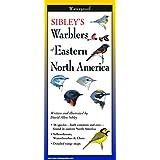 Sibley's Warblers of Eastern North Ameri