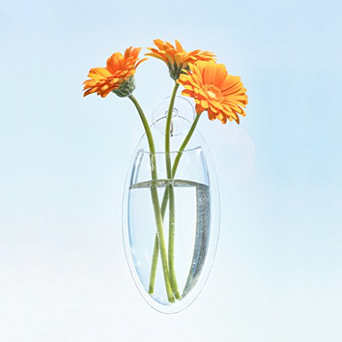 Made By Humans Oval Vase - Acrylic Decorative Hanging Window or Wall Vase for Flowers - Elegant Home Wall Décor (Large)