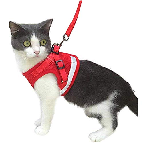 Kamots Beauty Escape Proof Cat Harness and Leash for Walking Adjustable Soft Mesh Pet Vest with Lead for Kitten -(Red,M) (Cat Harness D-ring)