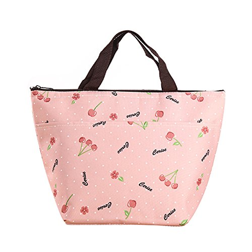 Lunch Bag Waterproof Picnic Tote Bag RALMALL Insulated Lunch Cooler Bag Lunch Holder Lunch Container Travel Zipper Organizer Box for Women Men Kids Girls Boys Adults (Type1)