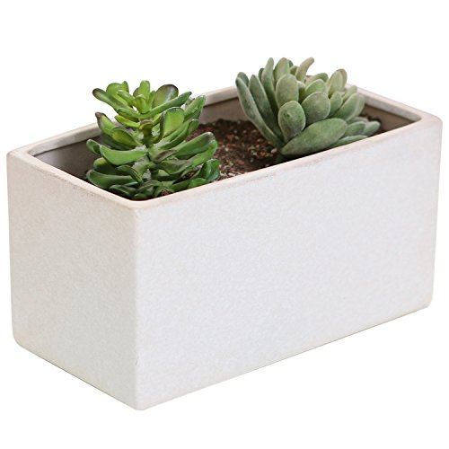 8-Inch Rectangular Textured Ceramic Succulent Cactus Planter Pot with Drainage Hole, White Oblong Stone