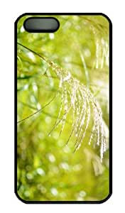 iPhone 5S Case - Customized Unique Design Japanese Pampas Grass New Fashion PC Black Hard