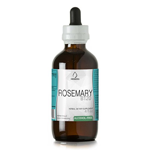Rosemary B120 Alcohol-Free Herbal Extract Tincture, Super-Concentrated Organic Rosemary (Rosmarinus Officinalis) (4 fl oz)