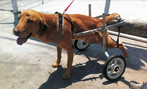 Silla de ruedas para perros M-45