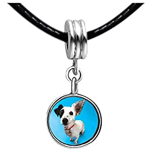 Chicforest Silver Plated Parson Russell Terrier Photo Blue Zircon Crystal December Birthstone Flower dangle Charm Beads Fits Pandora Bracelet