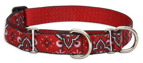 LupinePet 1-Inch Wild West 19-27-Inch Martingale Combo Collar for Large Dogs