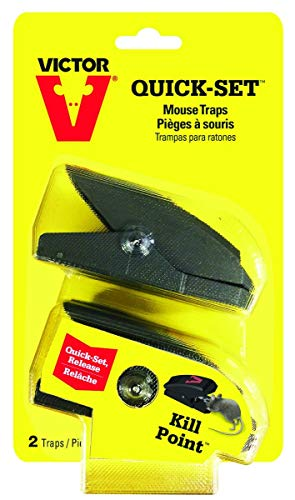Woodstream M137 Mouse Trap, 2-Pk ()