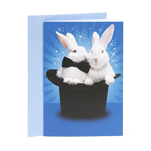 Hallmark Shoebox Funny Anniversary Greeting Card (Magic Bunnies)