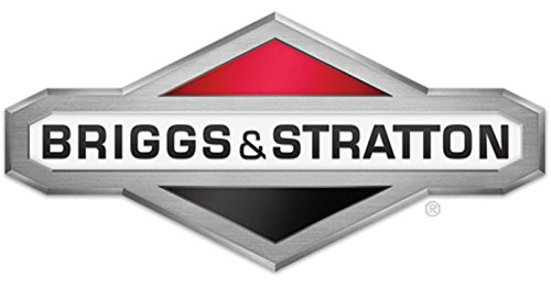 GEAR CASE & SHAFTS KI by Briggs & Stratton