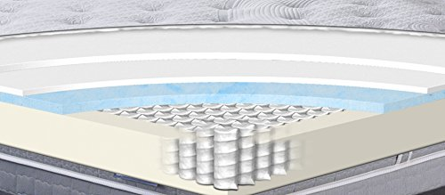 Serta Perfect Sleeper Gorham Plush Mattress, Twin