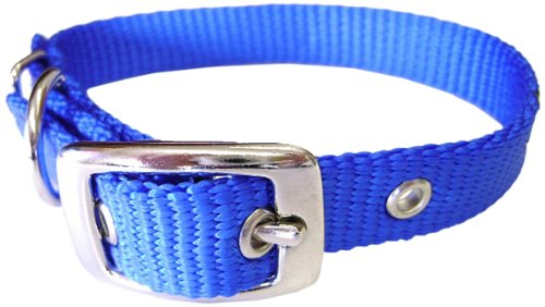Hamilton 5/8-Inch by 20-Inch Single Thick Nylon Deluxe Dog Collar, Blue