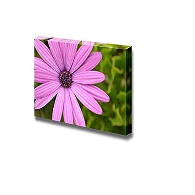 Premium Creation, Dazzling Expert Craftsmanship, Pink Daisy Close Up Wall Decor