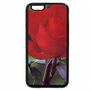 iPhone 6S Plus Case, iPhone 6 Plus Case, Rose