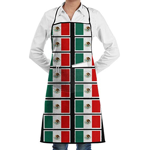 Raglan Carnegie Coloring Pages Mexican Flag Kitchen Apron with Convenient Pocket for Women/Men Professional Chef Apron for Cooking Grill and Baking ()