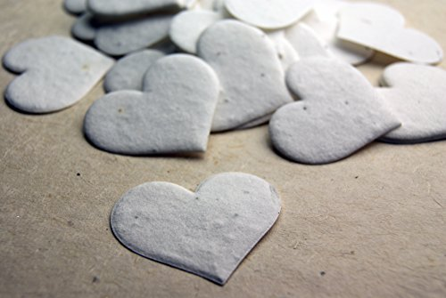 heart-shape-seed-embedded-handmade-paper-tags-set-of-50-white