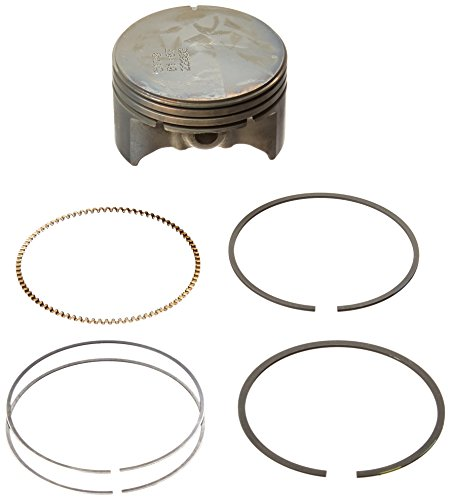(Briggs and Stratton 590404 Piston Assembly)