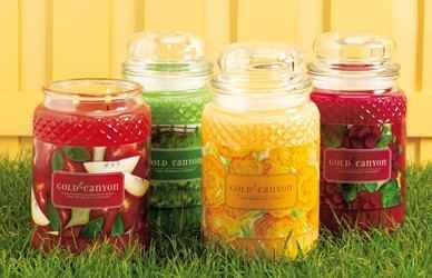 10 - 26oz , 5-Ginger Lime Gold Canyon Candles & 5-Cozy Christmas Mouthwatering. Bold. Vibrant. Wholesale Prices. by Gold Canyon Candles
