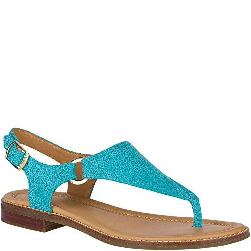 Sandal Top Abbey Sider Turquoise Sperry qxwfRXR