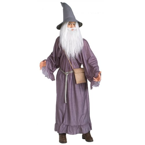Gandalf the Grey Adult Costume - -