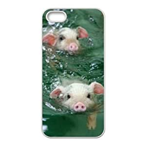 Cool Painting Pig DIY Cover Case for Iphone 5,5S,personalized phone case case697996