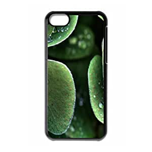 XiFu*Meiiphone 6 4.7 inch Case,Wet Leaves Hard Shell Back Case for Black iphone 6 4.7 inch Okaycosama361769XiFu*Mei