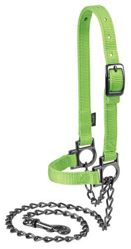 (Weaver Leather Livestock Nylon Adjustable Sheep Halter with Chain Lead)