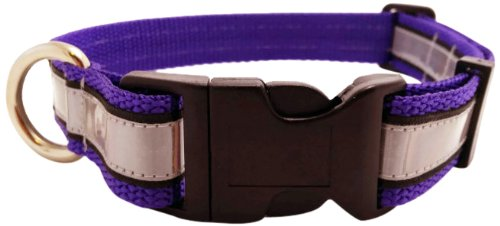 illumidog Reflective SOLAS Dog Collar, 14 to 20-Inch, Purple/Medium, My Pet Supplies