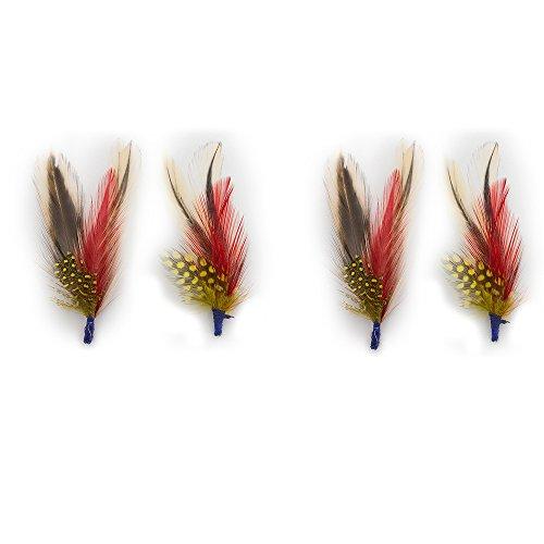 Bird Feathers 3
