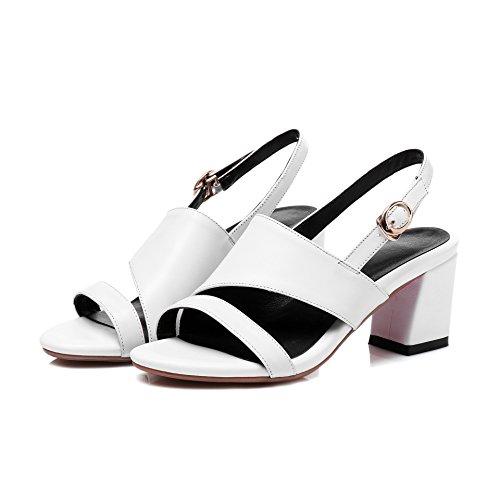 Donyyyy Zapatos de mujer, gran código sandalias y zapatos de mujer Thirty-six