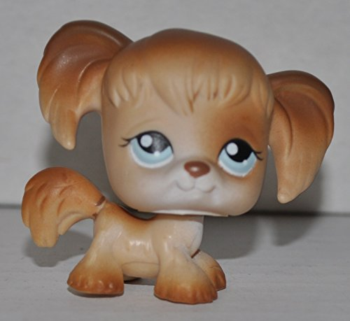 Spaniel, Tan, Blue Eyes, White Face) - Littlest Pet Shop (Retired) Collector Toy - LPS Collectible Replacement Figure - Loose (OOP Out of Package & Print) (Cocker Spaniel Collectables)