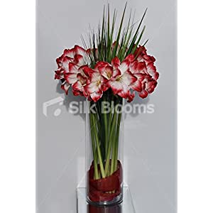 Huge Red Amaryllis w/ Grass Blades Vase Table Floral Arrangement 117