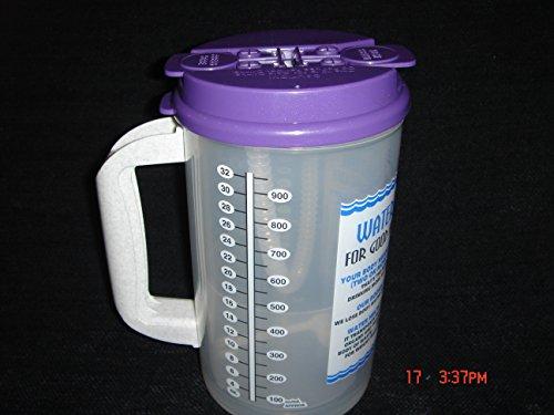 32 Oz W.E. Insulated Cold Drink Hospital Mug with Purple Lid