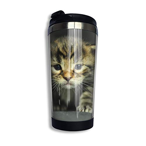 Coffee Thermos Cup Cats Kittens Dressed Up Stainless Steel Travel Mug Cup Water -