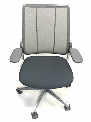 Diffrient Smart Humanscale Task Chair- Gray ()