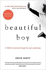 Image result for beautiful boy david sheff""