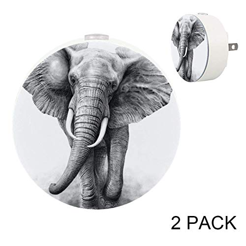 LORVIES A Pencil Drawing of an African Elephant Bull Charging by Wildlife Art Plug in LED Night Light Auto Sensor Smart Dusk to Dawn Decorative Night, 2 Pack