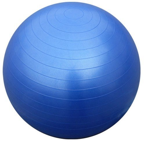 Nilly Yoga & Pilates Exercise Ball Home Gym Kit (four Promote Power, Stability Balance with Low-Impact Support – DiZiSports Store