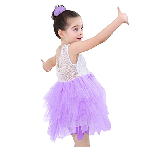Lace Back Flower Girl Dress,Kids Cute Backless Dress Embroidered Mesh Lace Applique Dress (Purple, 5-6 Years) (Mesh Embroidered Dress Cotton)