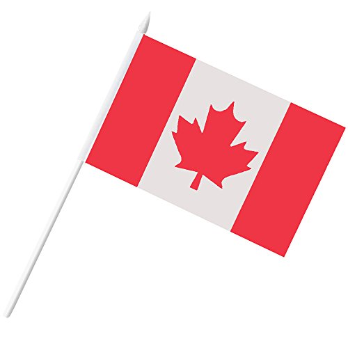 Canada Stick Flag  Anley Canadian 5X8 Inch Handheld Mini Flag With 12  White Solid Pole   Vivid Color And Fade Resistant   5 X 8 Inch Hand Held Stick Flags With Spear Top  1 Dozen