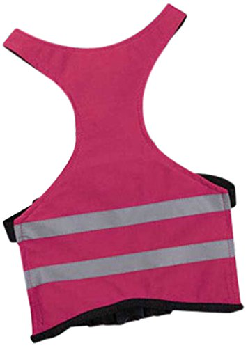 Guardian Gear Brite Reflective Safety Vest - Raspberry