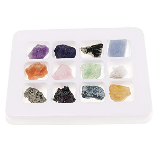 Specimen Storage - DYNWAVE 12pcs/Set Raw Gemstones Nuggets Quartz Rock Crystal Specimen Mineral Collection with Storage Box