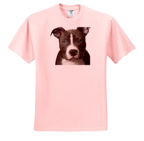 Dogs Pitbull American Terrier T Shirts