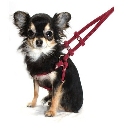 Hip Doggie Micro-Suede Step-in Harness/4-Feet Leash Set, XX-Small, Burgundy, My Pet Supplies