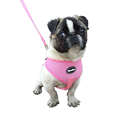 Reflective Puppy Harness Leash PUPTECK