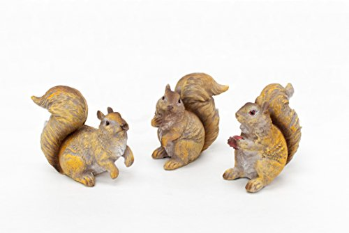 YK Decor 3 Pieces Resin Squirrel Statue Set 4.75 Review